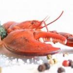 ¿Qué son crustáceos? - Tipos de crustáceos - Modos de preparación